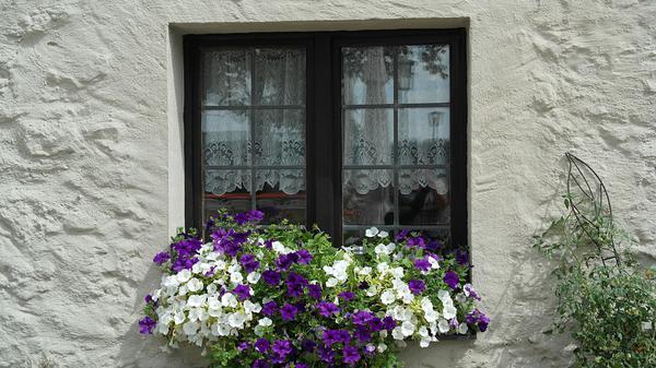 Kto wymieni pękniętą szybę w oknie?